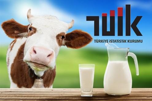 Süt ve Süt Ürünleri Üretimi,